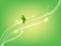 Bird flies on the abstract green background Royalty Free Stock Photography