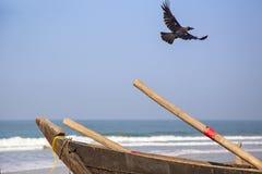 The bird flies over the boat Stock Photos
