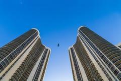 Bird flies between two skyscraper Stock Photo