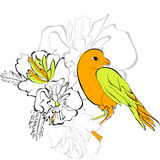 Bird on floral background Royalty Free Stock Photos