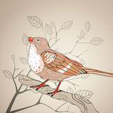 Bird and Floral Elements Royalty Free Stock Image