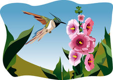 Bird on the flower Royalty Free Stock Photography