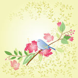 Bird and flower Royalty Free Stock Images