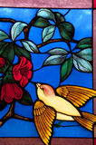 Bird with flower in chruch Royalty Free Stock Images