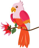 Bird and flower. Illustration of bird and flowers Stock Photography