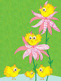 Bird Flower Line Background Stock Photography