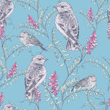 Bird and flower pattern Royalty Free Stock Images