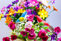 Bird and flower. Two birds and rose flowers Royalty Free Stock Photography