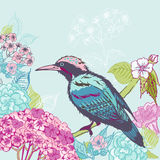 Bird with Flowers Background Stock Photos