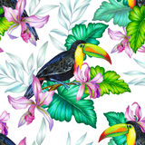 Bird with flowers, isolated. Bouquet of exotic flower with a small colorful tropical bird. Amazing detailed botanical illustration. Hyper real colors and Royalty Free Stock Image
