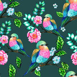 Bird with flowers, isolated. Bouquet of exotic flower with a small colorful tropical bird. Amazing detailed botanical illustration. Hyper real colors and Stock Photos