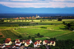 Bird-fly overview to small village in Alsace. France. Summer day Stock Photos