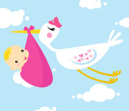 Bird flying with baby Royalty Free Stock Photo