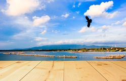 Bird flying on blue sky with light yellow color wood terrace. The bird flying on blue sky with light yellow color wood terrace texture background royalty free stock photo