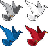 Bird Flying Colors Royalty Free Stock Images