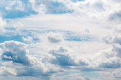 Bird flying in dramatic sky with clouds. In Germany Stock Image