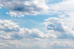 Bird flying in dramatic sky with clouds. In Germany Royalty Free Stock Photo