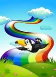 A bird flying near the rainbow Stock Photography