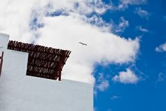 Bird flying over building Stock Photography