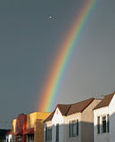 Bird flying over a rainbow Stock Image