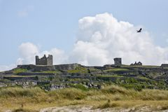 Bird flying over the ruins of O`Brien`s castle on Inisheer, Aran islands, Ireland Stock Photos