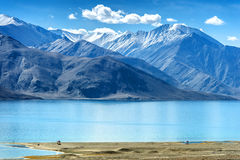Bird flying Pangong Lake, is an endorheic lake Stock Photo