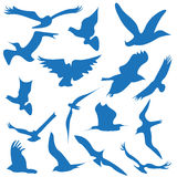Bird flying symbols logo and icons Stock Photography