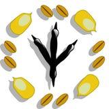 Bird food. Illustration of corn, wheat and print bird feet as a symbol of bird food Stock Photography