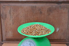 Bird food on weighting scale Stock Images