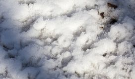 Bird footprints on the snow Royalty Free Stock Photos