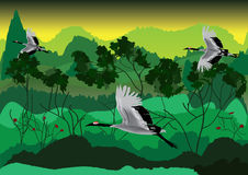 Bird And Forest_eps royalty free illustration