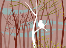 Bird in forest, vector illustration Stock Photo