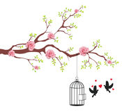 Bird of freeing from the cage to its lover. This is conceptional abstract picture Stock Images