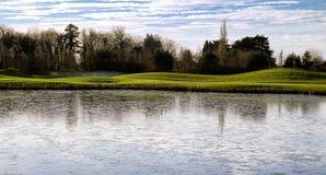 Bird on Frozen pond. Beside golfcourse royalty free stock image