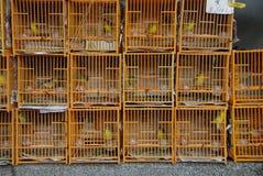 Bird Garden. Cages with birds in Bird Garden in Mong Kok district of Hong Kong Royalty Free Stock Images