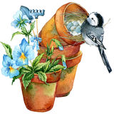Bird and Garden flowers background. vector illustration