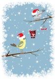 Bird gives a winter celebratory box Royalty Free Stock Photos