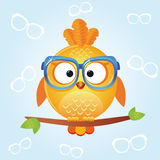Bird glasses. Illustration of funny icons birds in stylish glasses Royalty Free Stock Photography