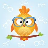 Bird glasses Royalty Free Stock Photography