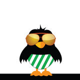 Bird with glasses and green shorts Royalty Free Stock Images