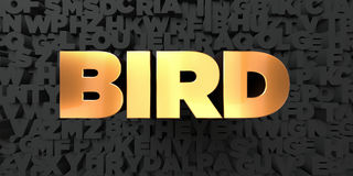Bird - Gold text on black background - 3D rendered royalty free stock picture Royalty Free Stock Photo