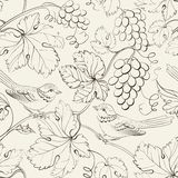 Bird and grape, seamless pattern. Stock Photography