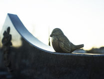 Bird on a gravestone Royalty Free Stock Photos