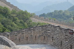 Bird on the Great Wall of China Stock Photo