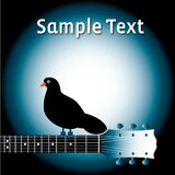 Bird on guitar neck with text Royalty Free Stock Image