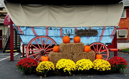 Bird-in-Hand, PA: Conestoga Wagon and Fall Decorations Royalty Free Stock Photography