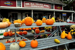 Bird-in-Hand, PA: Pumpkins at Village Store Stock Photo