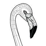 Bird head flamingo tattoo vector illustration isolated on white background sketch design for T-shirts.  Stock Image