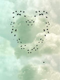 Bird Heart. In a cloudy sky Stock Images