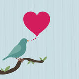 Bird with heart Stock Image